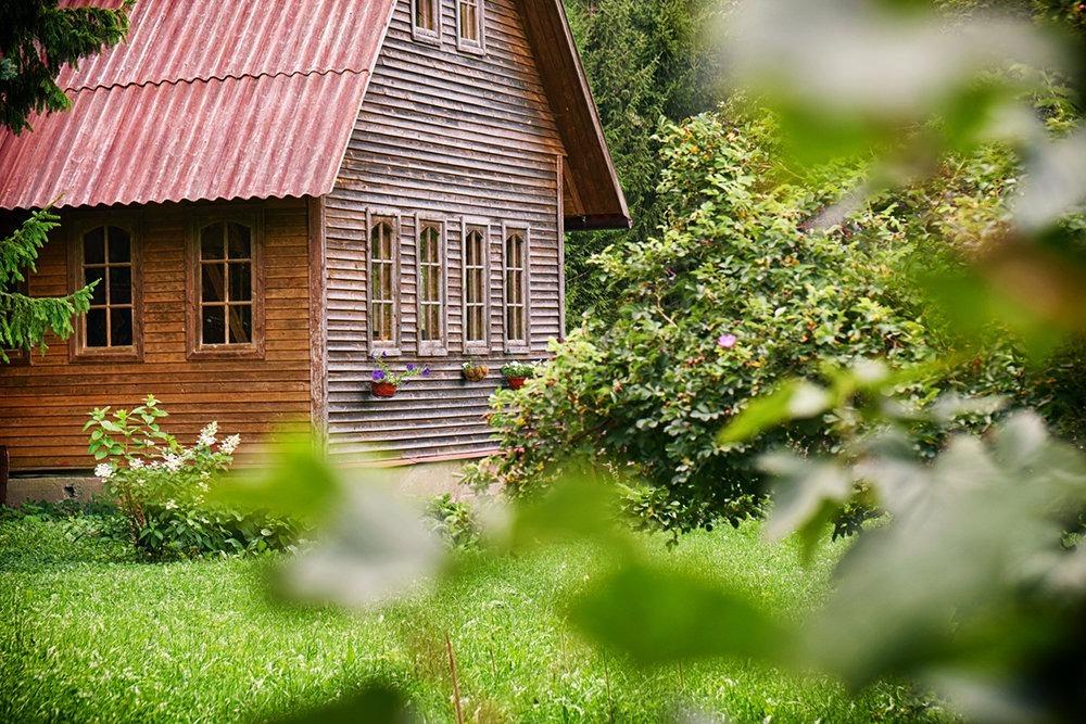 Дачный домик в окружении сада
